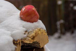 Ako jesť počas zimy