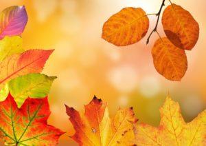 Jesenná mágia