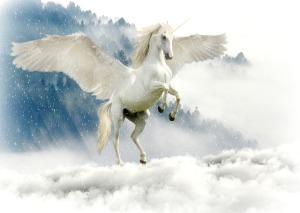 unicorn-2875349_640